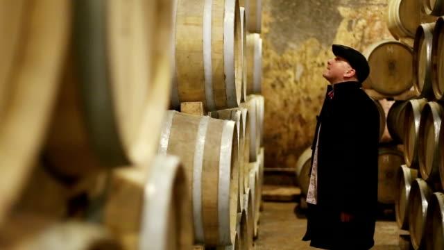 kontrollerande vinkällare och fat - fransk kultur bildbanksvideor och videomaterial från bakom kulisserna
