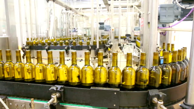 Conveyor bottling wine video