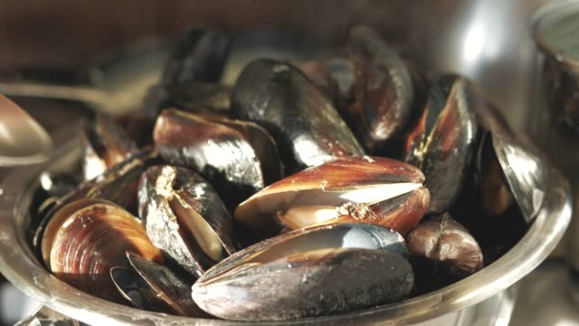 cook sea shellfish. mussels with garlic sauce video
