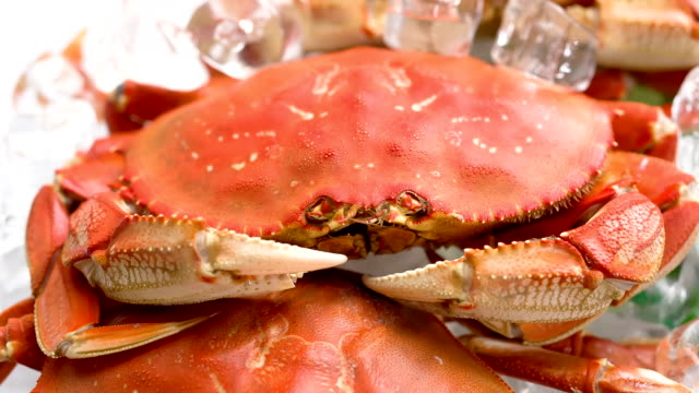 Cooked Crab video