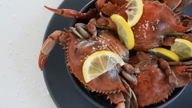 gekochte rote krabben, leckere gesunde meeresfrüchte - essgeschirr stock-videos und b-roll-filmmaterial