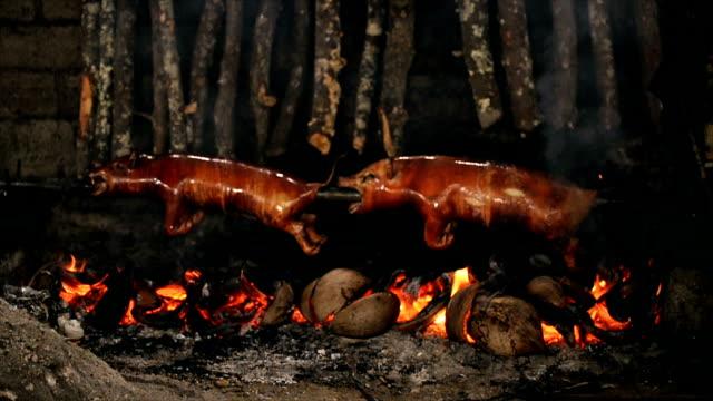 Cooking Babi Guling in. video