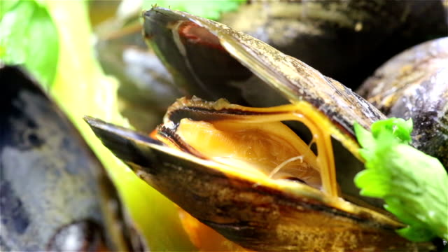 Cooking Mussel video