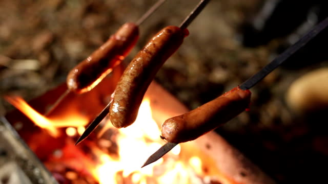 Cooking sausages by the campfire. ビデオ