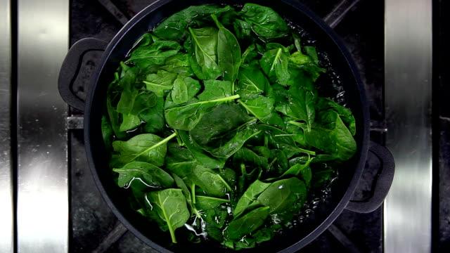 cucinare spinaci - fornello video stock e b–roll