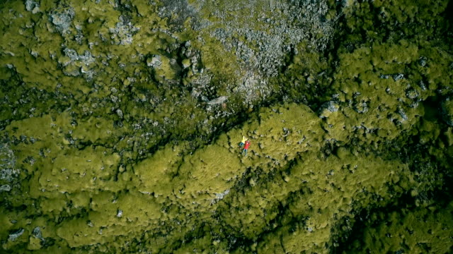 Copter falls down whirling from long shot to close-up. Top aerial view of woman lying on lava field in Iceland, resting