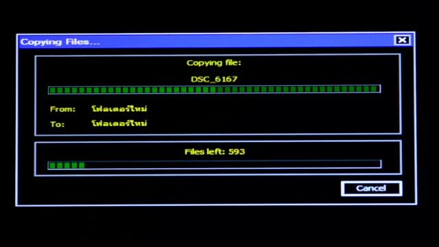 vídeos y material grabado en eventos de stock de copia de archivo - copiar