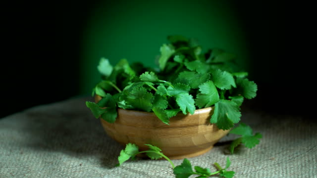 Coriander Turning Loopable video