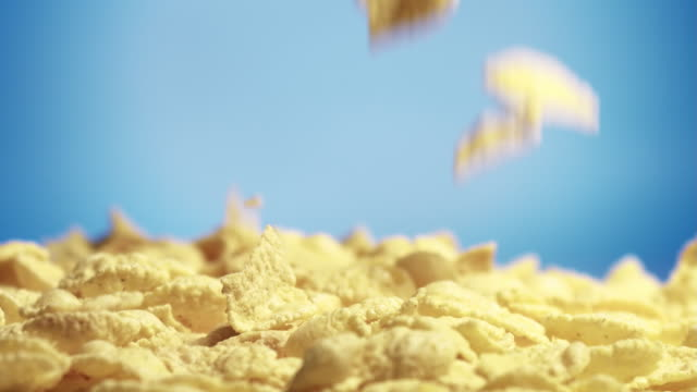 Corn cereals falling on a hip on blue background video