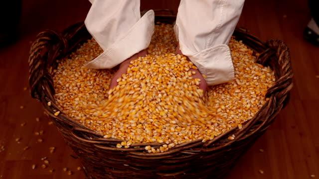 corn in the basket - sale stok videoları ve detay görüntü çekimi