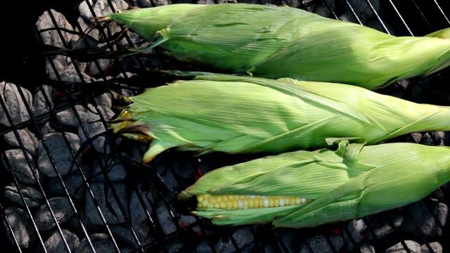 corn on the barbeque - skalhylsa bildbanksvideor och videomaterial från bakom kulisserna