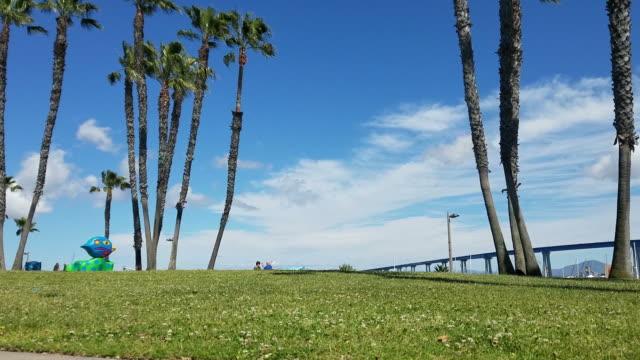 Coronado bridge park video