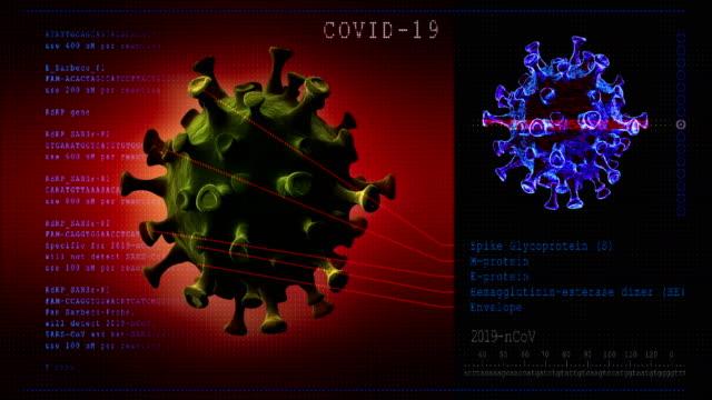 Coronavirus disease. 3D model COVID-19 Coronavirus disease. 3D model virus COVID-19, scientific research, scanning electron microscope. Seamless loop. electron micrograph stock videos & royalty-free footage