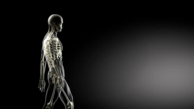 Correct posture concept video
