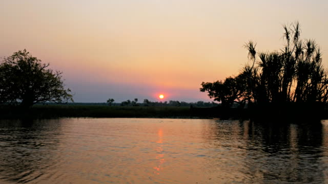 corroboree billabong sunset the sunsets at corroboree billabong wetlands in australia's northern territory waterhole stock videos & royalty-free footage