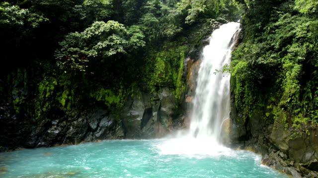 коста-рика рио-голубой водопад в национальный парк тенорио - водопад стоковые видео и кадры b-roll