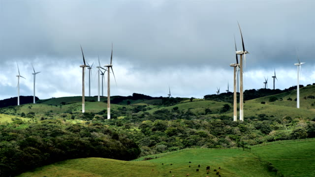 costa rican countryside: windmills - ekoturystyka filmów i materiałów b-roll