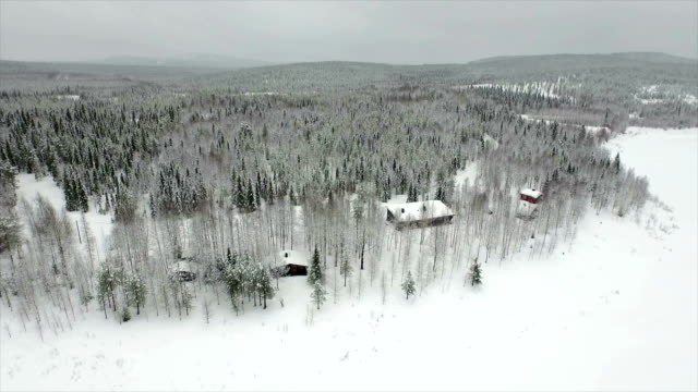 AERIAL: Cottages in snowy woods North of Finland from above, small cottages located in the woods covered with snow. vinter stock videos & royalty-free footage