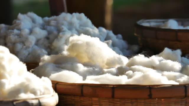 cotton from silkwarm in basket.
