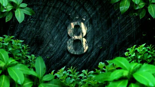 odliczanie las tropikalny deszcz - ekoturystyka filmów i materiałów b-roll