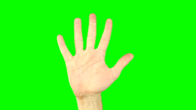 Counting by fingers from 5 to 1 and from one to five. Green screen keyed background. Male hand gestures with numbers to zero. Close-up concept. Hand gestures count one two three four five 1 2 3 4 5. video