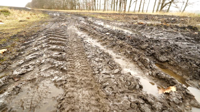 Country dirt road with muddy puddles in spring. Movement along tire tracks Country dirt road with muddy puddles in spring. Movement along tire tracks on wet ground. mud stock videos & royalty-free footage