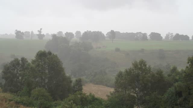 country rain video