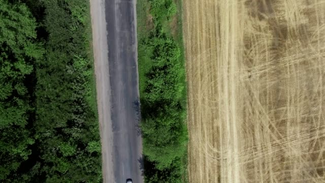 A country road along a field of golden grain under a bright blue sky. - vídeo