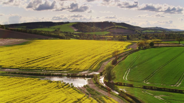 country road between fields in idyllic rural landscape in west sussex - drone shot - south downs video stock e b–roll