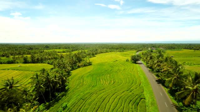 空から見た田舎道バリで - マルチコプター点の映像素材/bロール