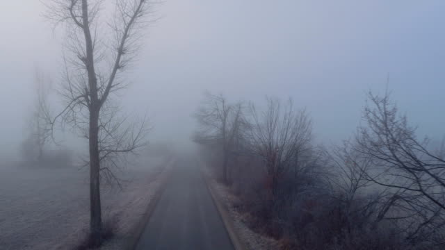 aerial: country road leading through dark creepy fields in foggy winter - trees in mist stock videos & royalty-free footage