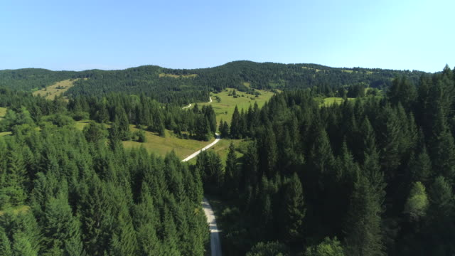AERIAL Country road leading through idyllic forested highlands in sunny Slovenia video