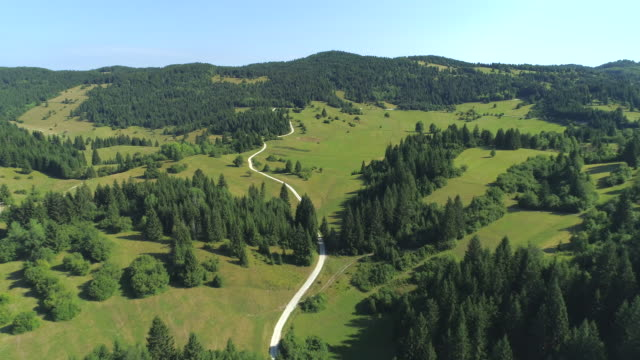 AERIAL: Country road leading through idyllic forested hills in sunny Slovenia video
