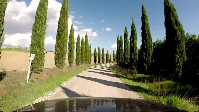 countryroad in chianti region, tuscany, italy - проспект стоковые видео и кадры b-roll