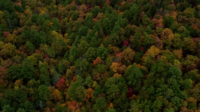 vidéos et rushes de us countryside aerial v10 voler bas au-dessus des collines d'automne panoramique vers le haut près d'helen ga. - nord