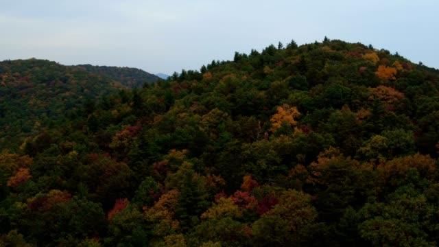 vidéos et rushes de us countryside aerial v11 voler bas au-dessus des collines d'automne panoramique près d'helen ga. - nord