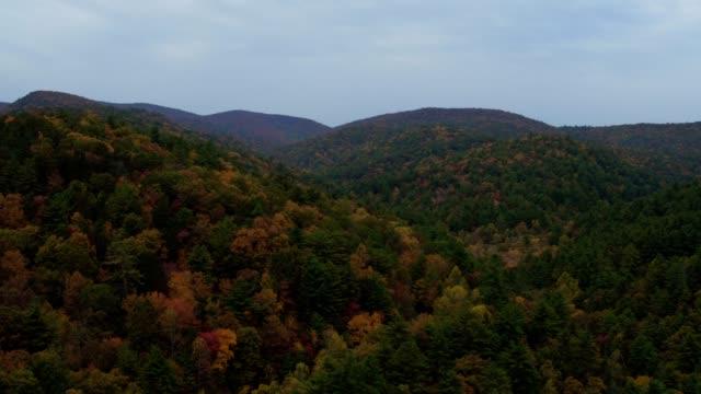 vidéos et rushes de us countryside aerial v8 voler bas au-dessus des collines de l'automne panoramique près d'helen ga. - nord