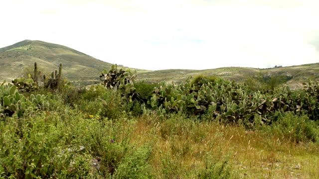 Countryside landscape in Peru video
