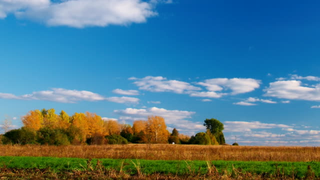 Countryside landscape panning - clouds, blue sky, autumn forest video