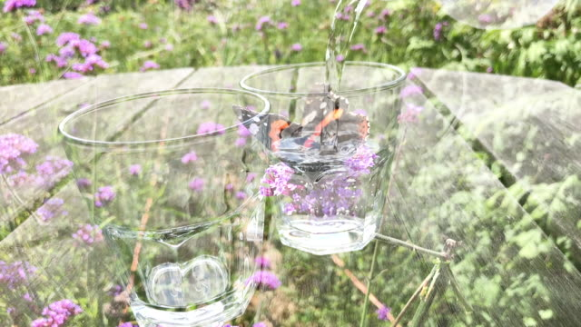 Countryside Scene of Water Pouring with Butterfly Overlay