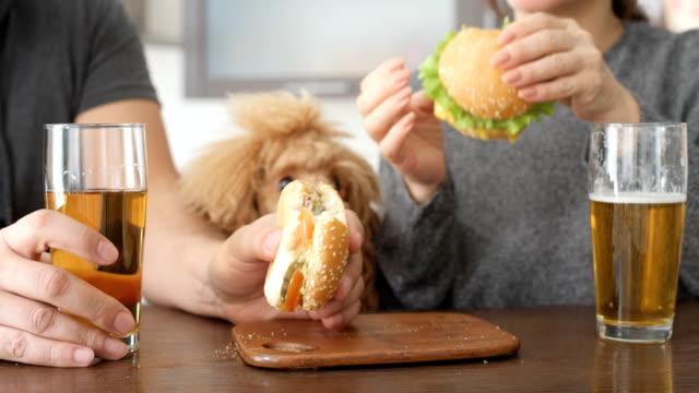 couple eating fast food. - cheeseburger filmów i materiałów b-roll