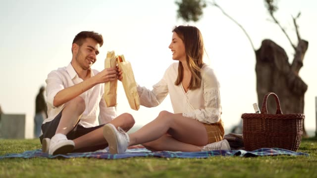 couple enjoying sandwiches on picnic - picnic video stock e b–roll