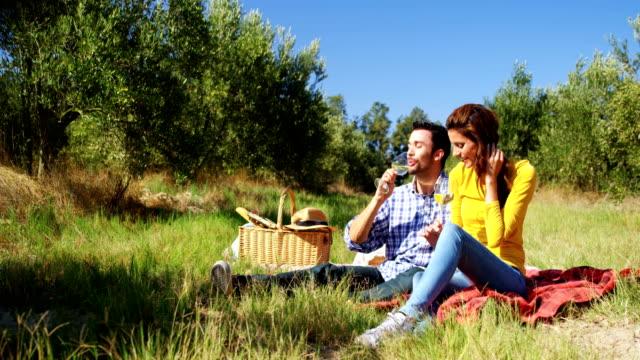 オリーブ農園 4 k でワインのガラスを持っているカップル ビデオ