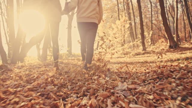 slo mo пара весело autumn leaves контакта с мячом - autumn стоковые видео и кадры b-roll