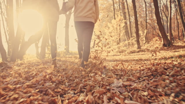 slo mo 커플입니다 재미있는 발길질 추절 잎 - autumn 스톡 비디오 및 b-롤 화면