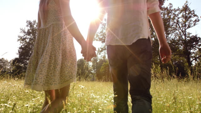 SLO MO Couple holding hands walking across a summer meadow video