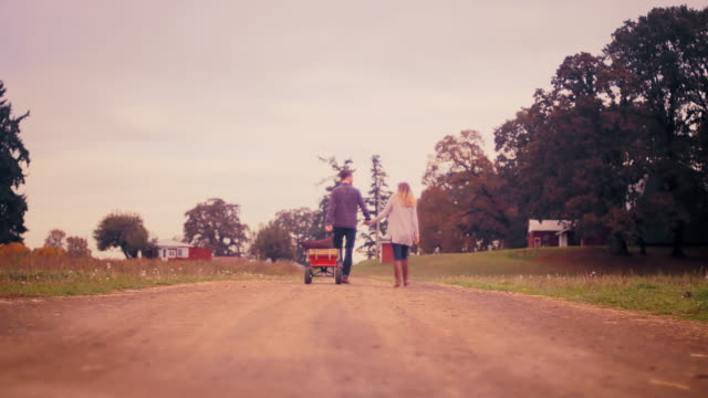 A couple holding hands while pulling a wagon at a pumpkin patch, walking away from the camera