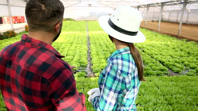 Couple In Greenhouse On Organic Farm video