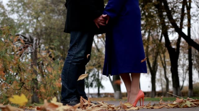 Couple in love embracing in autumnal park video