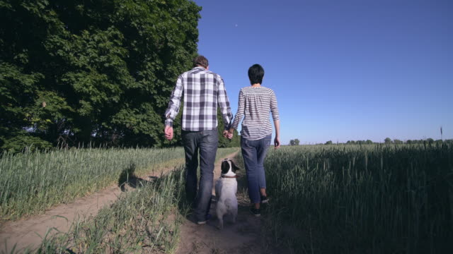 couple in love walk the dog video